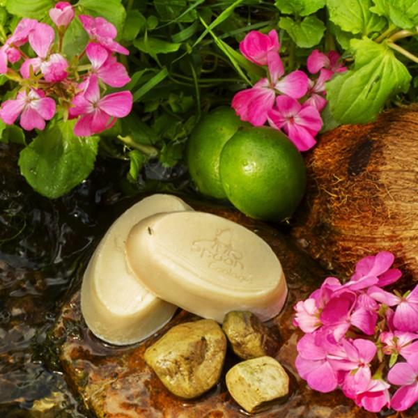 Jabón sólido Coco con Neem Cuidado de la piel