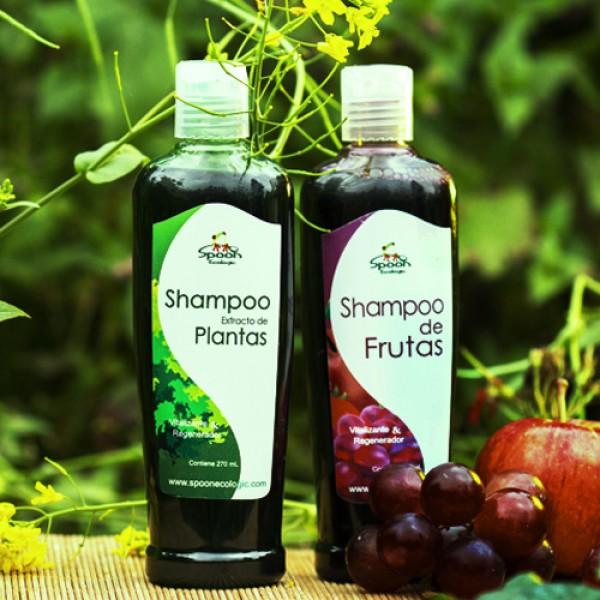 Shampoo de Plantas (Regenerador),Cuidado del cabello
